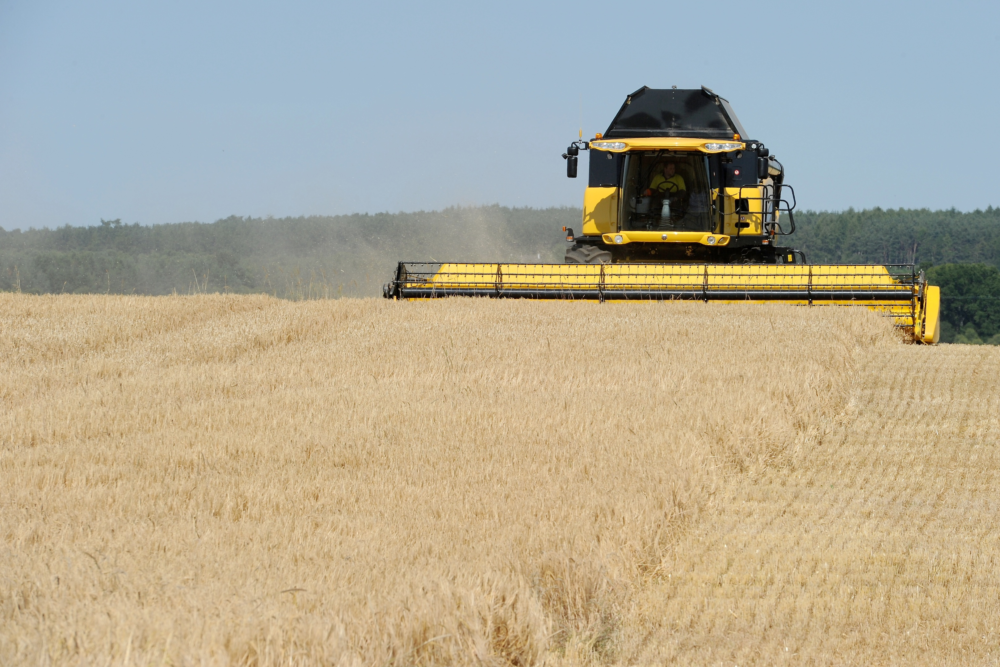 There was a 10% increase in the barley harvest last year and prices rose from £67m to £253m.