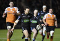 Ruaridh Jackson on his way to scoring his solo try for Glasgow.