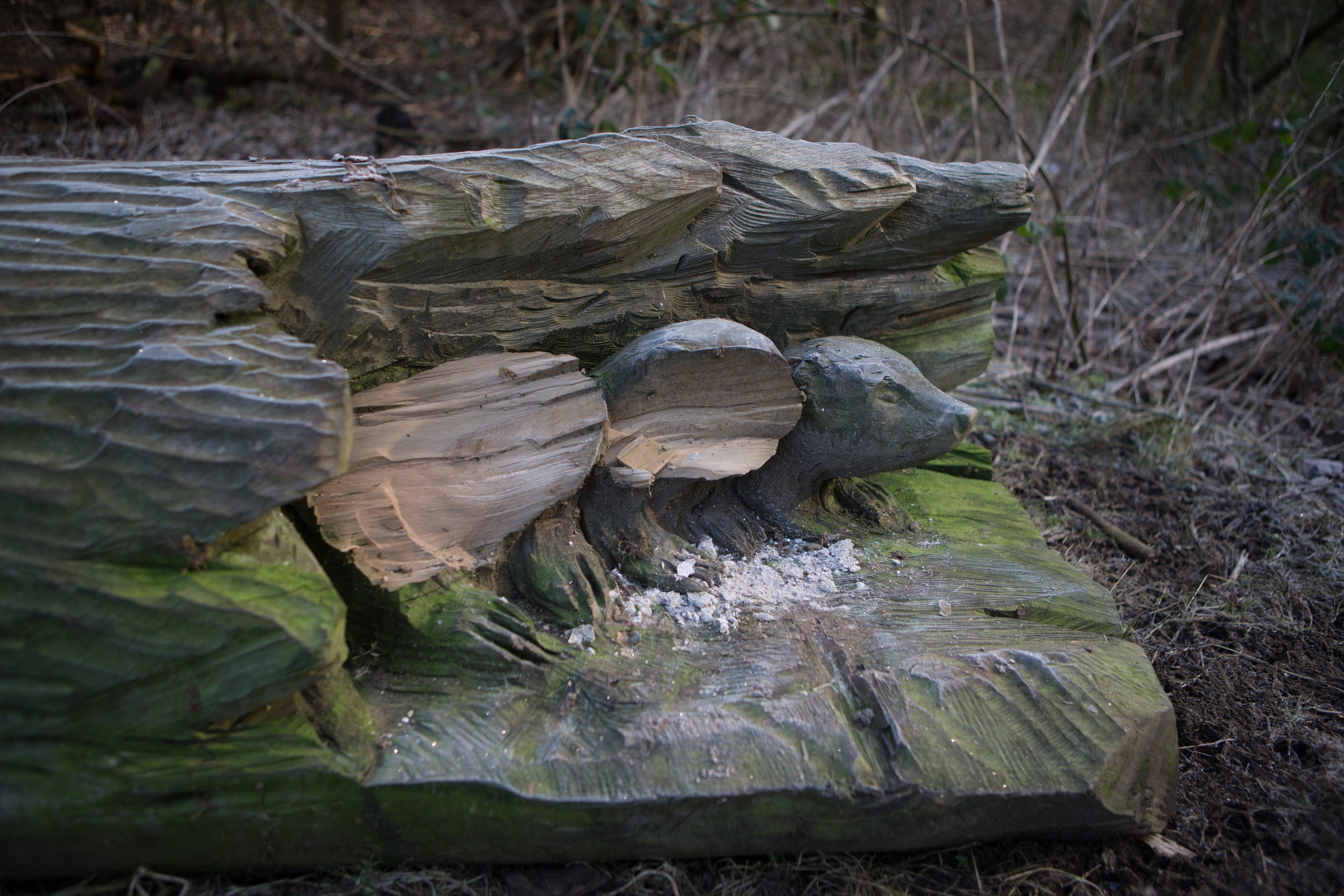 Damage to the Badger Sculpture in Rabbit Braes, Kirkcaldy.