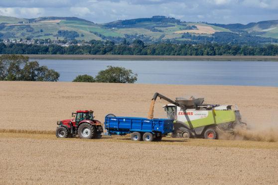 Scottish farmland is in demand from Irish buyers