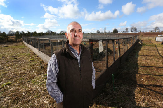 Jim Goodlad at the pheasant pens which were damaged.