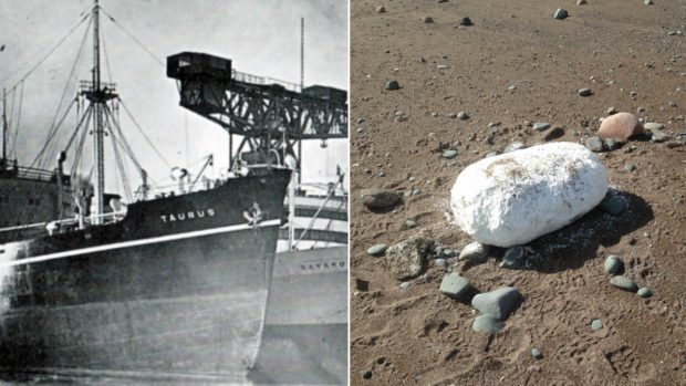 The MS Taurus, left, and a block of lard that washed up at Gourdon, right.