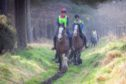 Caroline and Richard Gray take part in an endurance ride at Tentsmuir on their stunning Clydesdales, Higgins and Strathorn Linn.