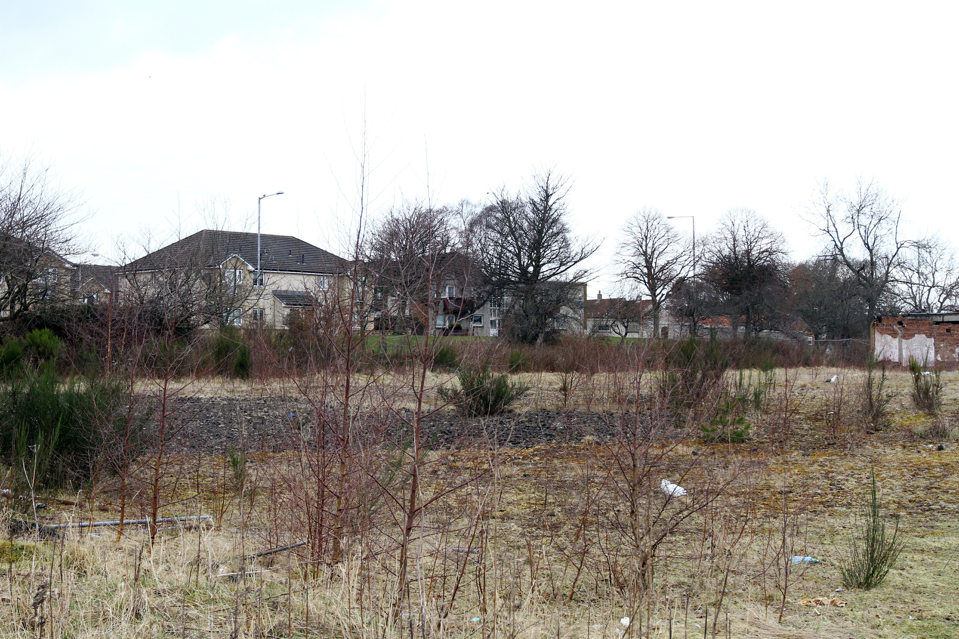 The vacant spot earmarked for housing by a developer, but protected as employment land by the local authority.