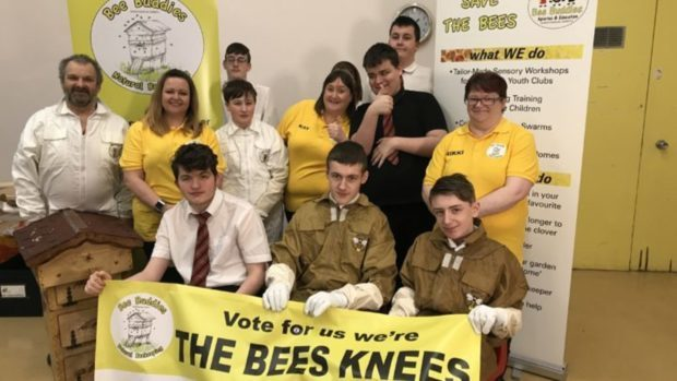 The Bee Buddies want people to vote for them.