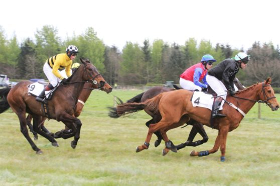 Action from last year's Fife Point-to-Point