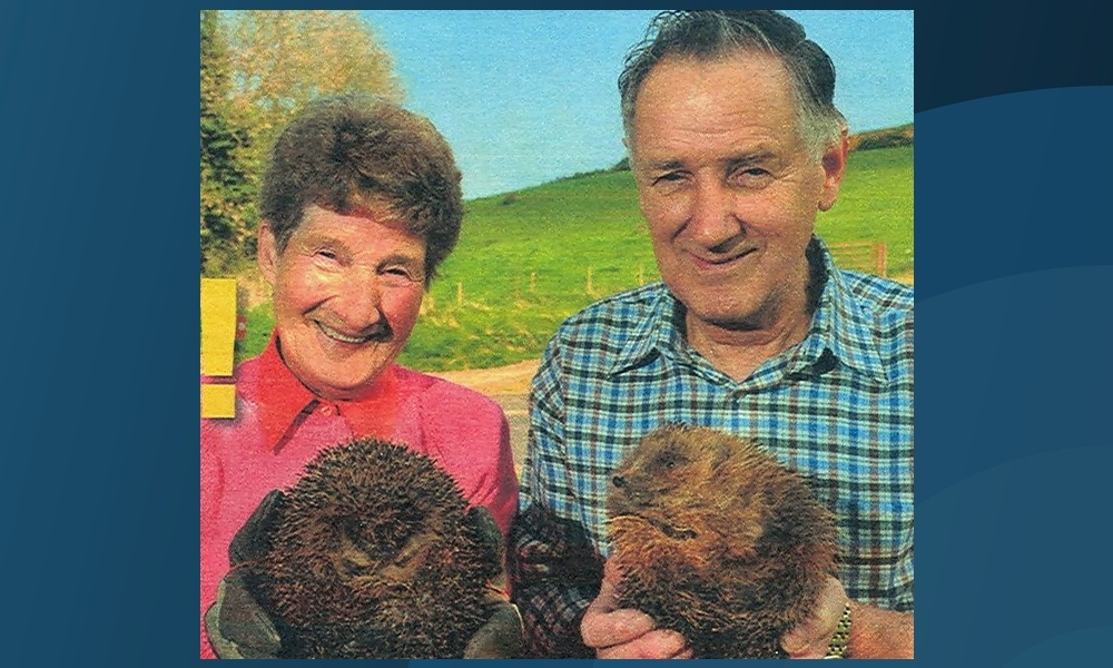 Sandy and Alice Boyd dedicated years of their lives to the welfare of hedgehogs.