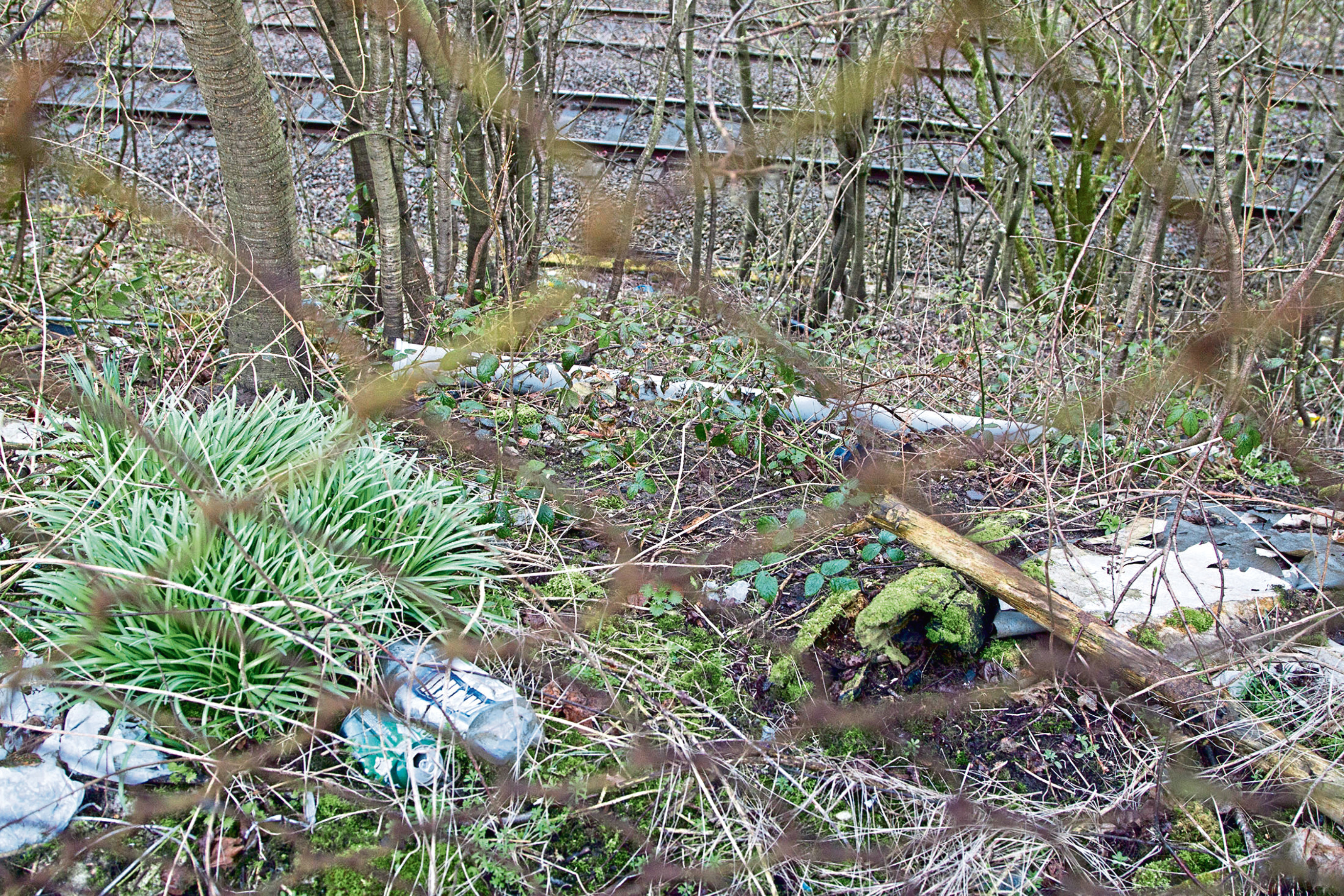 Discarded rubbish plagues many of our hedgerows and roadside verges.
