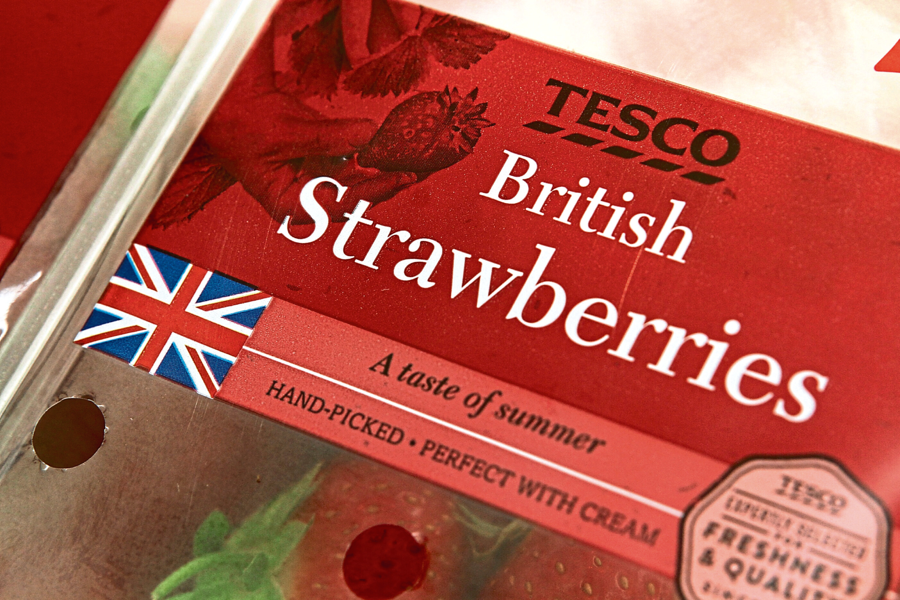 Courier News - story - Scottish/British strawberries. Picture shows some Scottish strawberries, picked up in the Tesco store at Kingsway West Retail Park today, Tuesday 23rd August 2016, branded as 'British' with a Union Jack, even although they are from Perthshire, as it shows on the label.