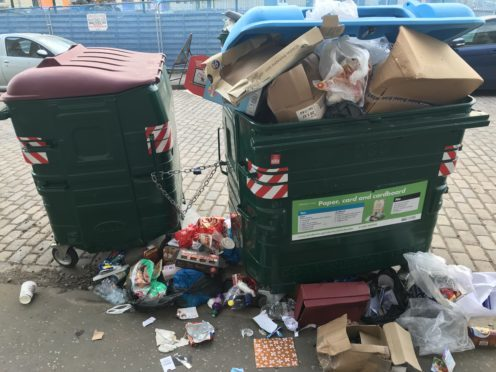 The state of the bins on Ann Street earlier this year.