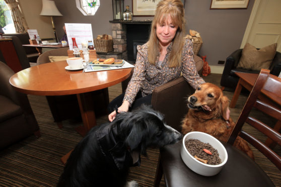 Meg and Sula experience Doggy Dining at the Murraypark Hotel, with Michele Bilsland of Discover Crieff.