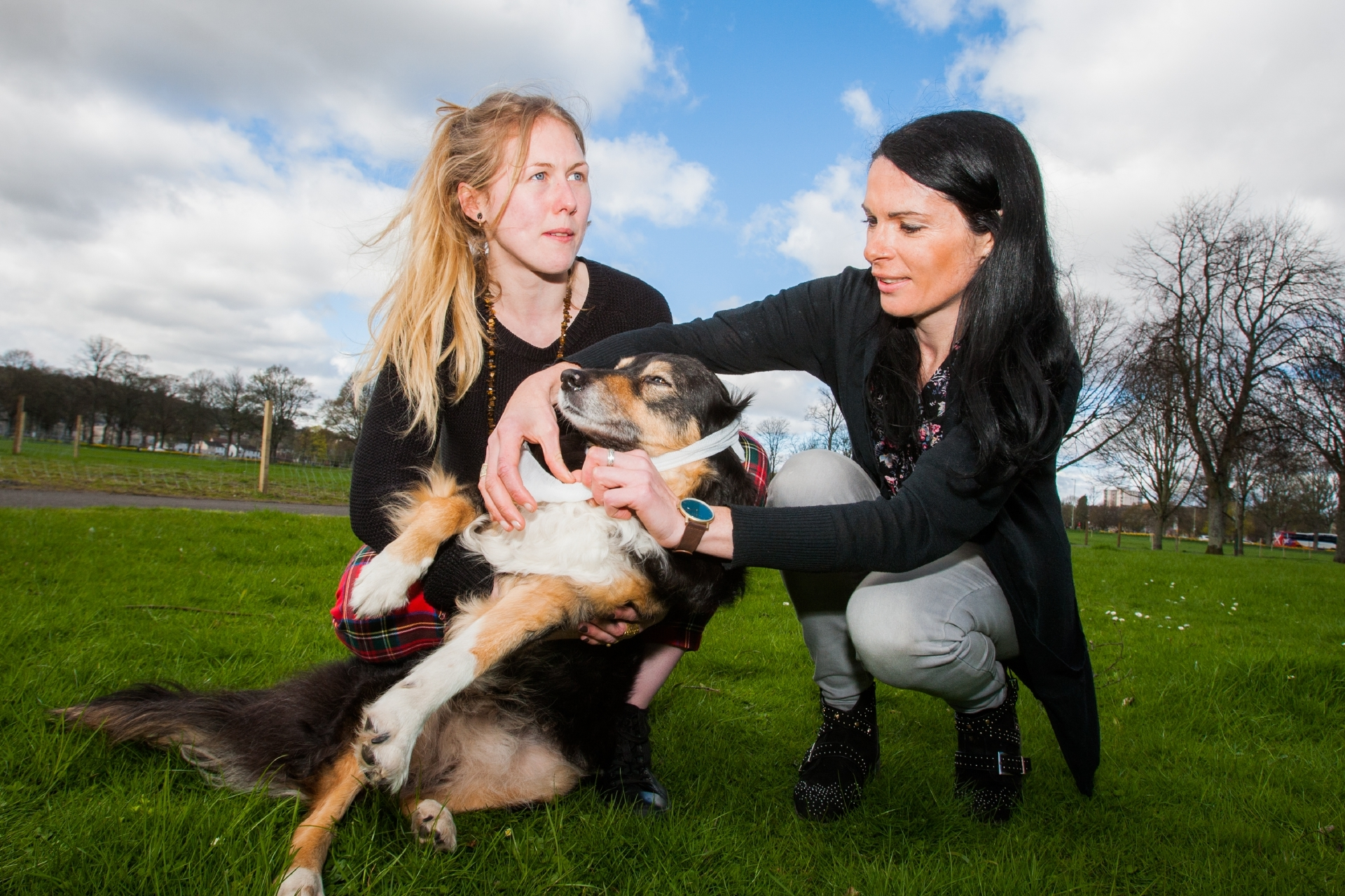 Leah Farquharson (Membership Development, Woodland Trust Scotland) helps as Gayle Ritchie bandages Leah's dog, Leo.