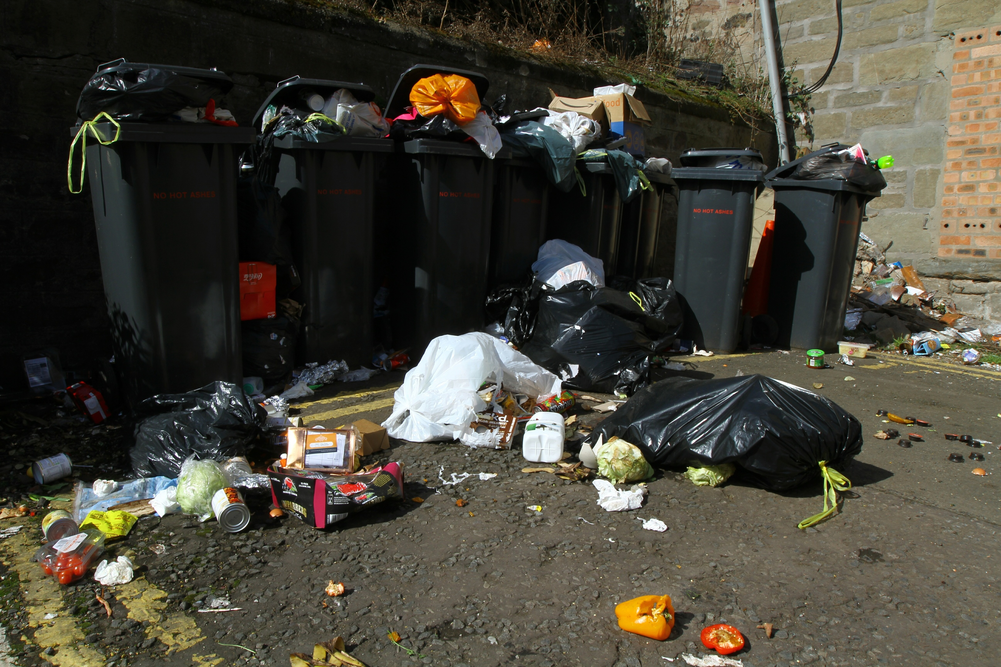 Overflowing rubbish at Seabraes Lane recently.