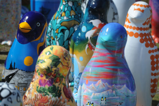 Some of the colourful sculptures on the Maggie's Penguin Parade.
