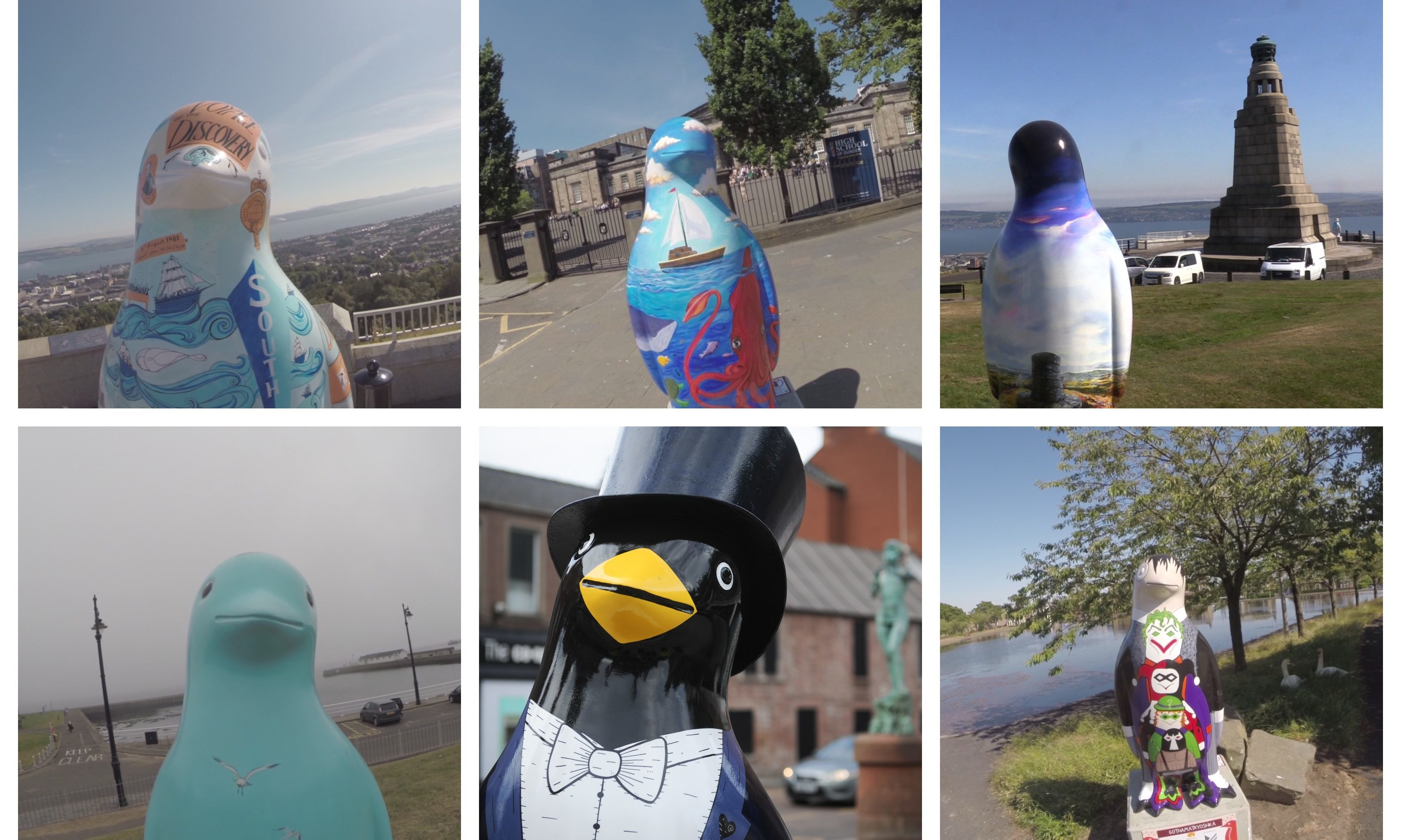 Maggie's penguins in place across Dundee.