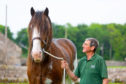 Ronnie Black with stallion Collessie New Approach.