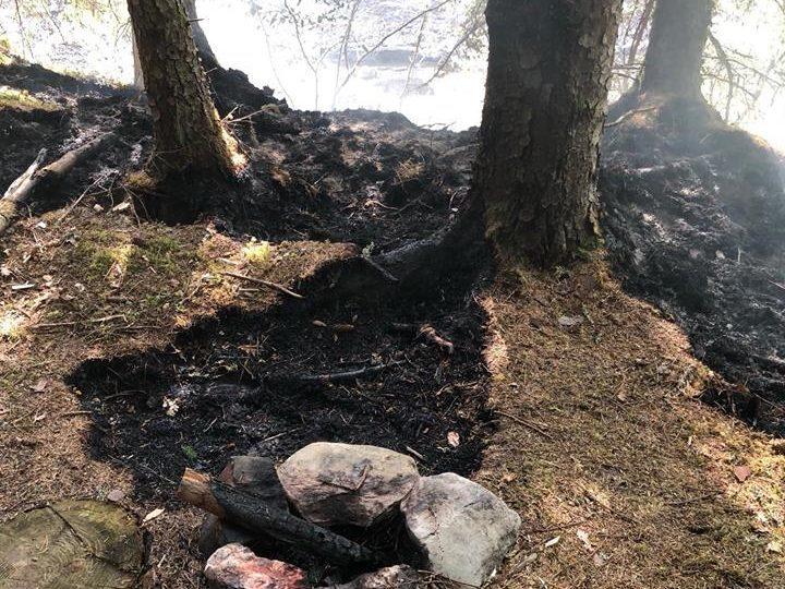 Fire broke out in woods in Glen Tilt