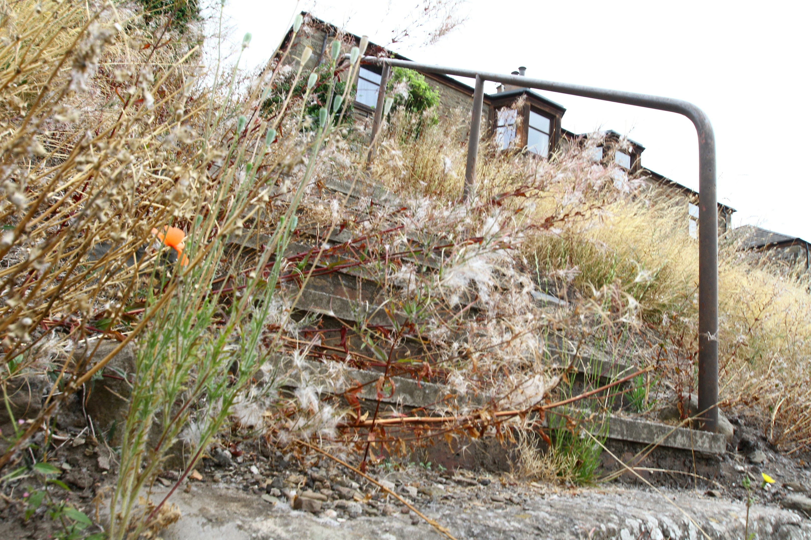 The steps near Kenilworth Avenue on Wednesday morning.
