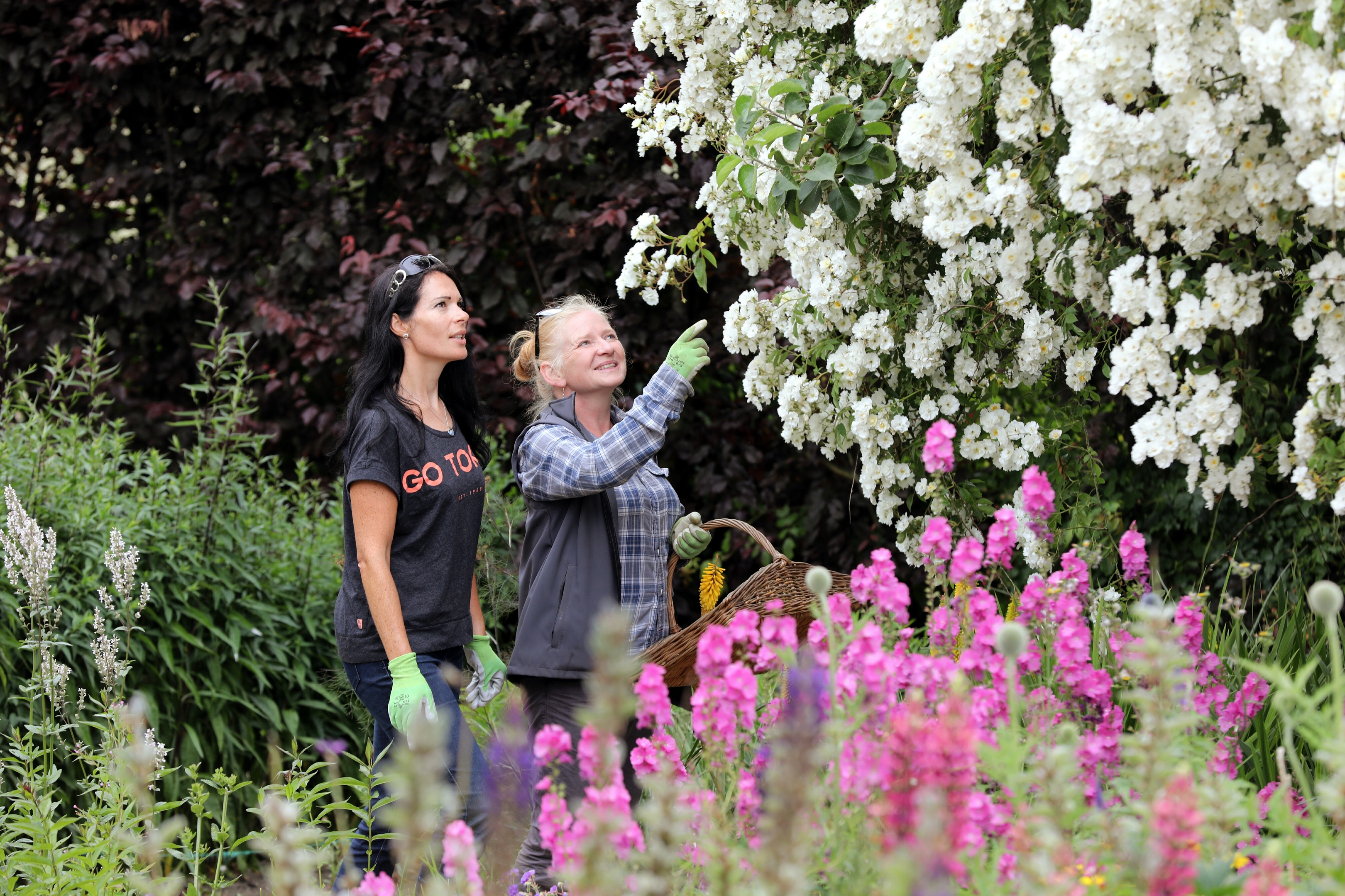 Gayle and Cambo's head gardener Fay McKenzie cut and gather flowers.
