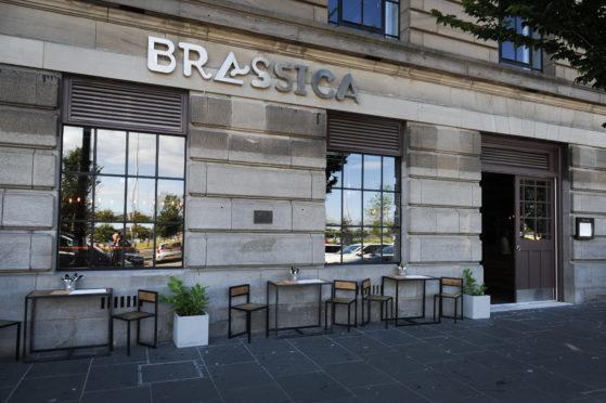 Brassica.
