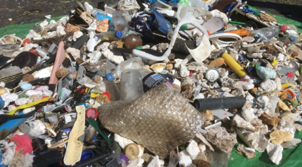 A pile of plastic and debris was gathered on the Isle of May beach in just one hour.