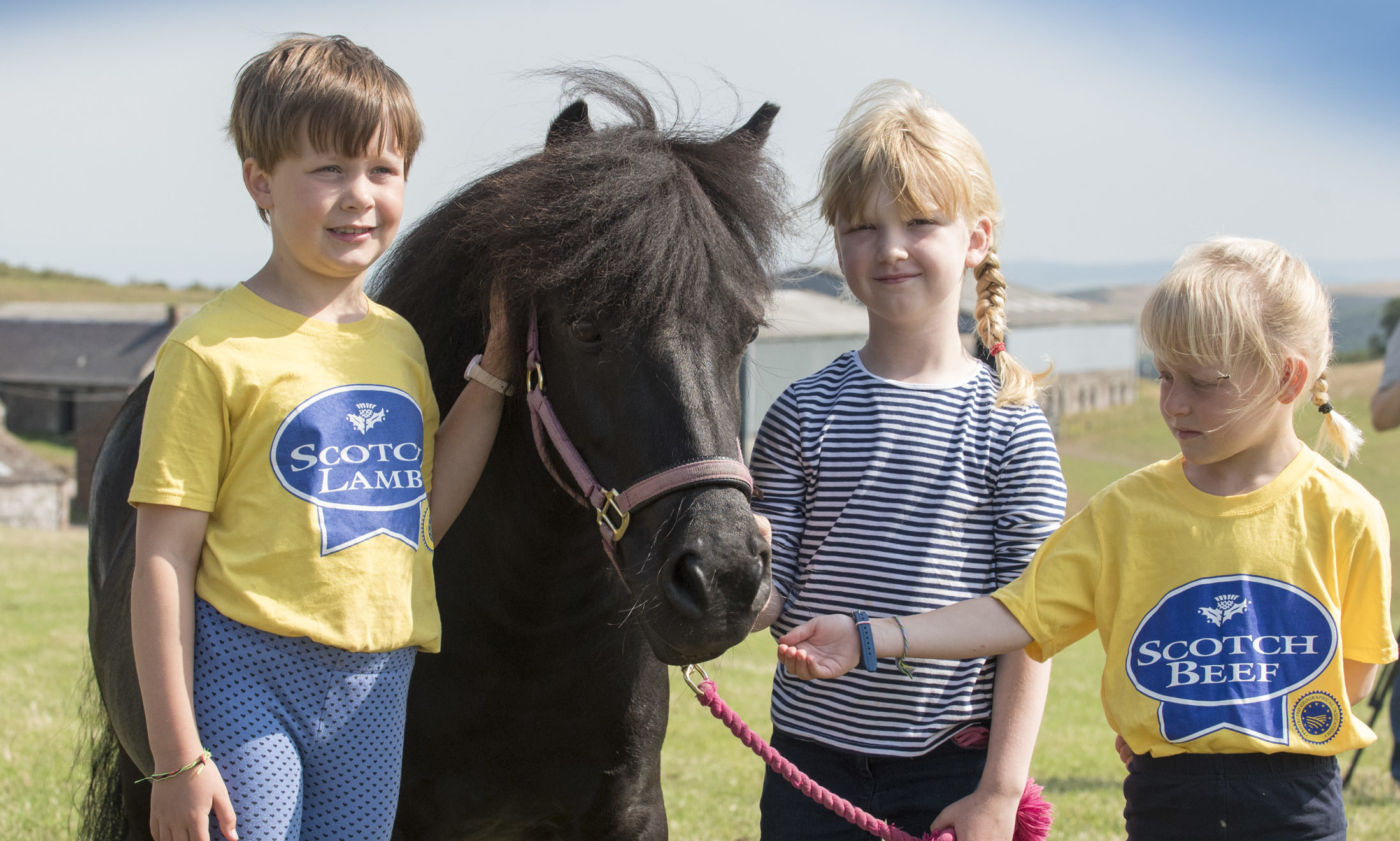 Children were able to get close to their favourite horses at the Perth Show.