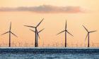 A sea of wind turbines.