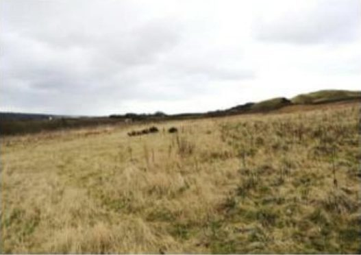 The site near Balbie Farm which could be turned into a landfill.