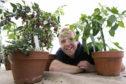 Brian Cunningham, Scone Palace Head Gardener and Beechgrove Garden presenter, pictured in 2013