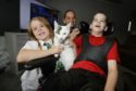 Storm the cat is back with its family - mum Shelley Forrester, with Jonathon (9) & Leah  (8)