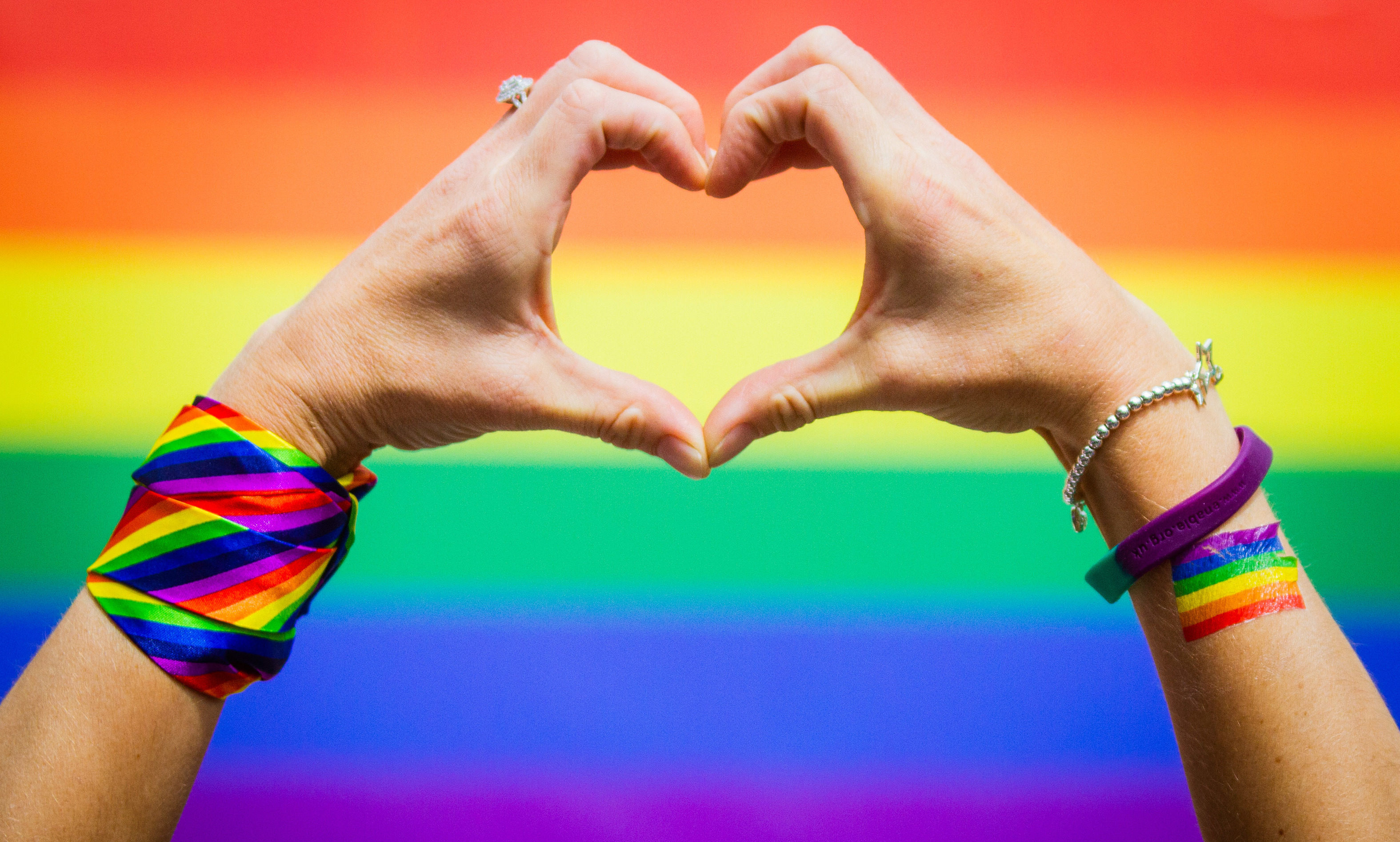 The hand heart with the pride flag in the background.
