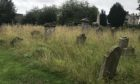The overgrown Greyfriars churchyard in Perth.