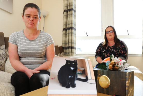 Lorna Ogilvie and Michelle Williamson with pictures of Sylvester, 3 who was run down on Wednesday and the ashes of Tigger who was run down last year.