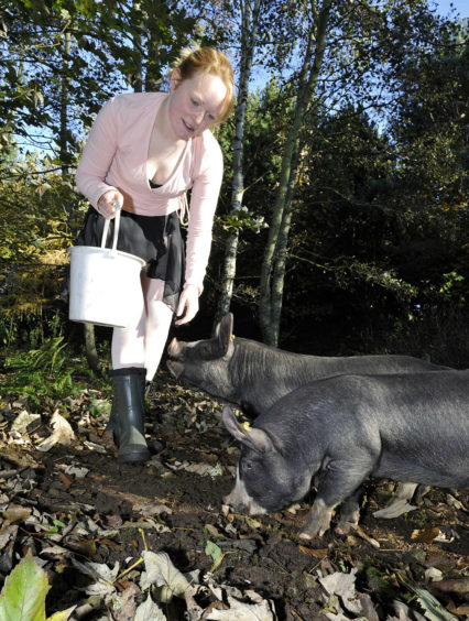 Rearing rare pigs may not be the first job that springs to mind for a professional dancer but it's what Bonnie Blair-Imrie chose to do. Bonnie swapped her dancing shoes for wellies when she opened Lunan Life  which provided camping, an art gallery, a shop and grazing on which to rear free-range pig breeds such as the Large Black and Berkshire.