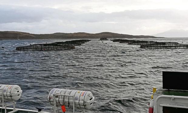 A fish farming operation in Loch Fyne