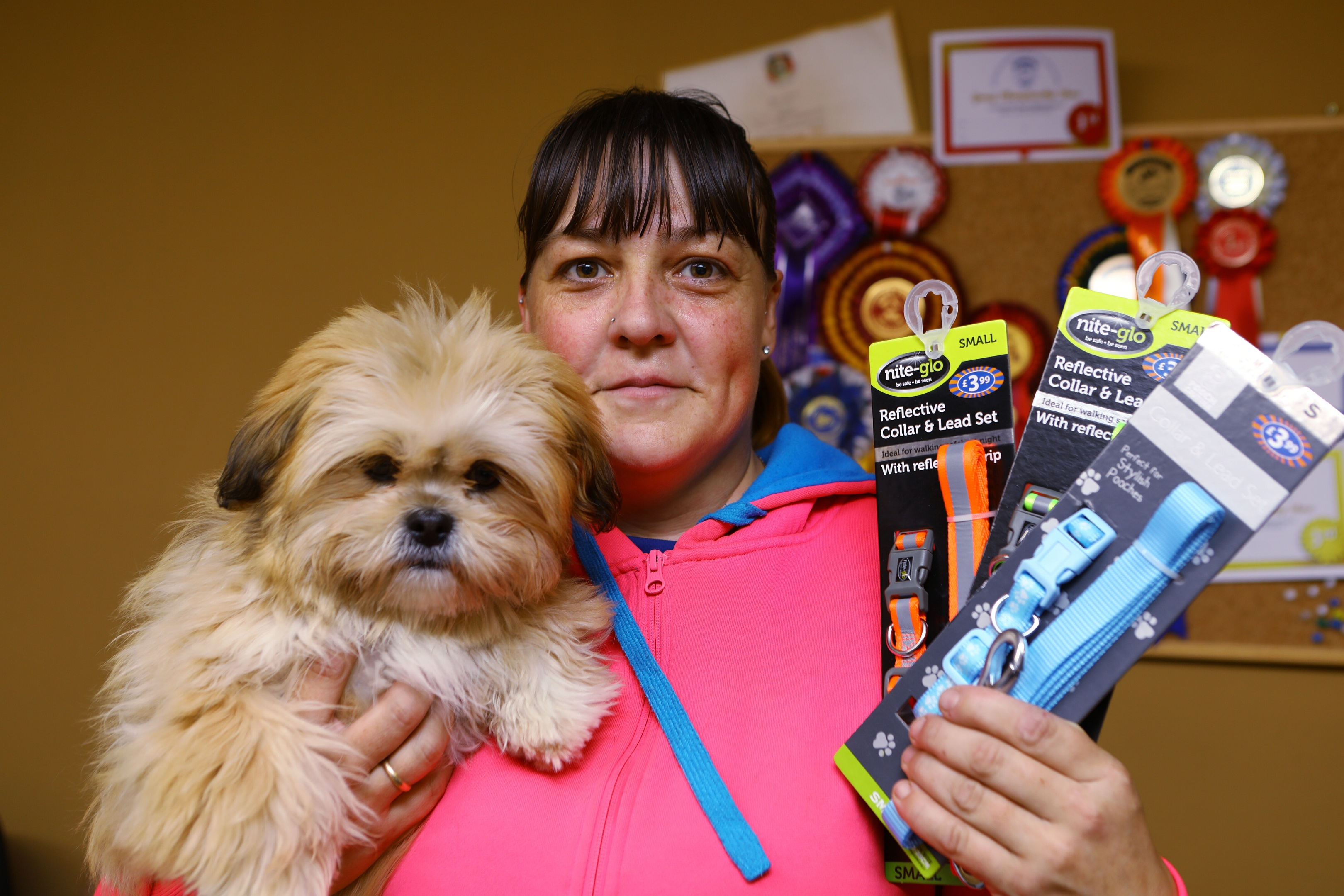 Courier News - Sarah Vesty story - Langdyke Kennels. CR0004088 Picture shows; Nichola Mackay with Millie and some of the new leads and collars that have been handed in so far, at Langdyke Boarding Kenels, near Kennoway today. Saturday 13th October 2018. Dougie Nicolson / DCT Media.