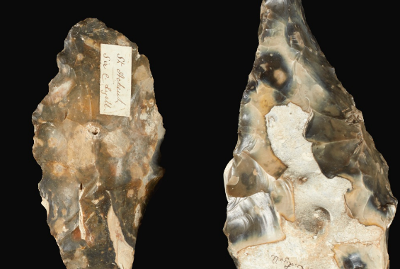 Ancient flint hand axes in detail.