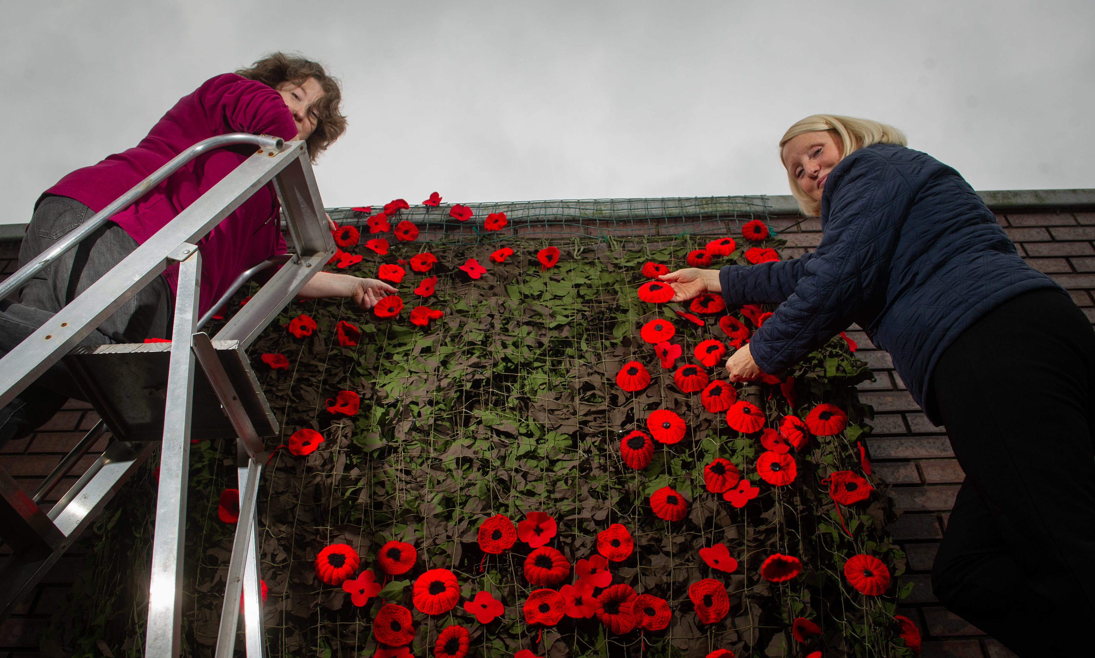 Hanging the 'waterfall' of poppies at the Legion Scotland (Forfar Brach) Garden of Remembrance - Leilah Wallace and Margaret Brown.