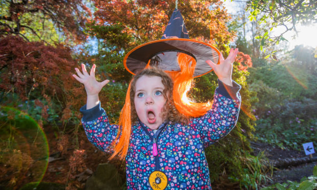 Ailsa Shaw aged 3, from Alyth enjoying her spooky visit to Branklyn Garden