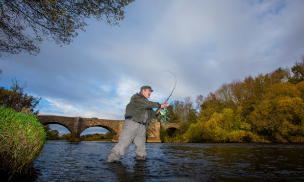 Salmon fishing in River Earn