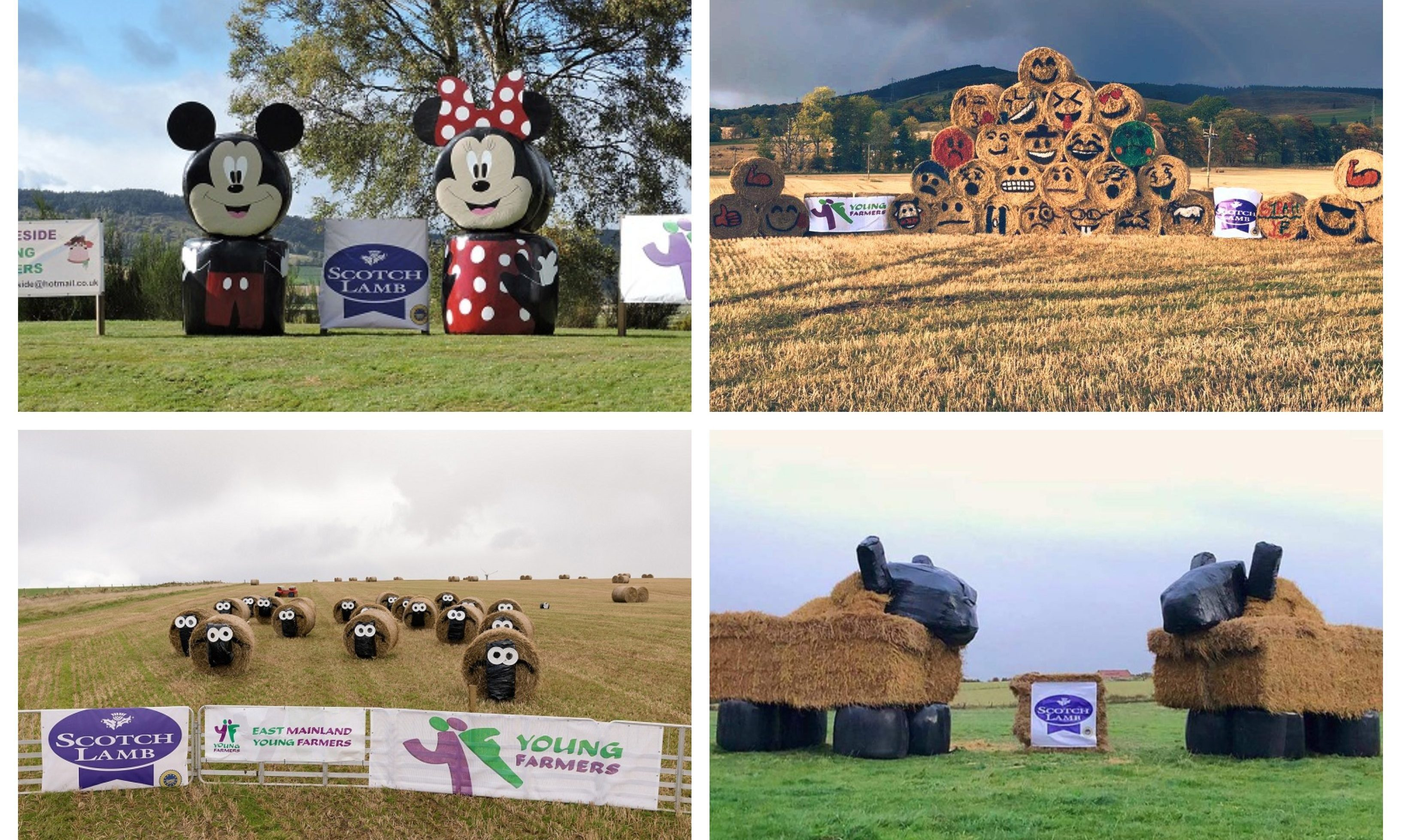 Pictures show the finalists of this year's straw bale art competition.
