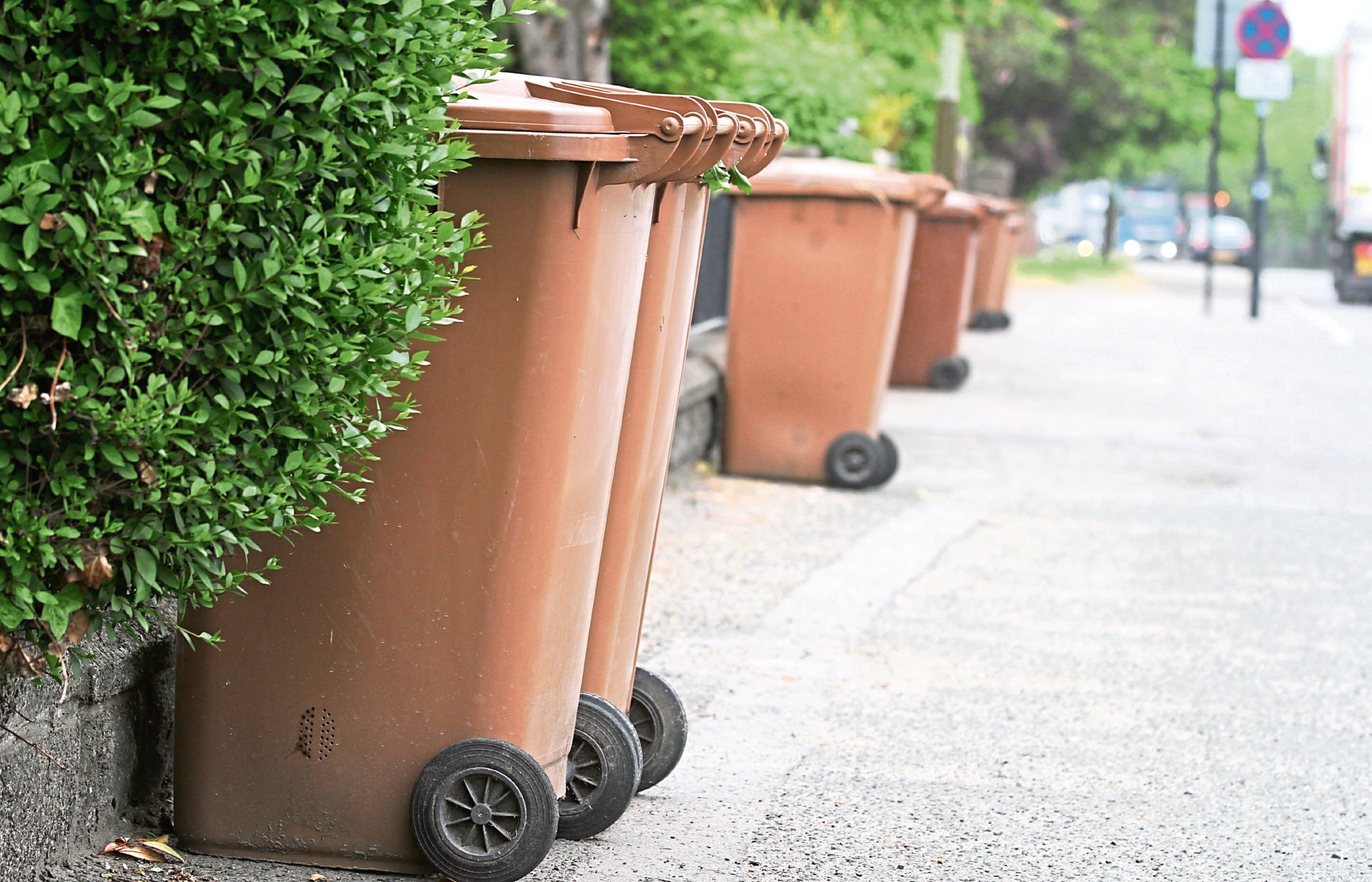 Brown bins out for collection.