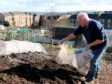 Liming the brassica patch
