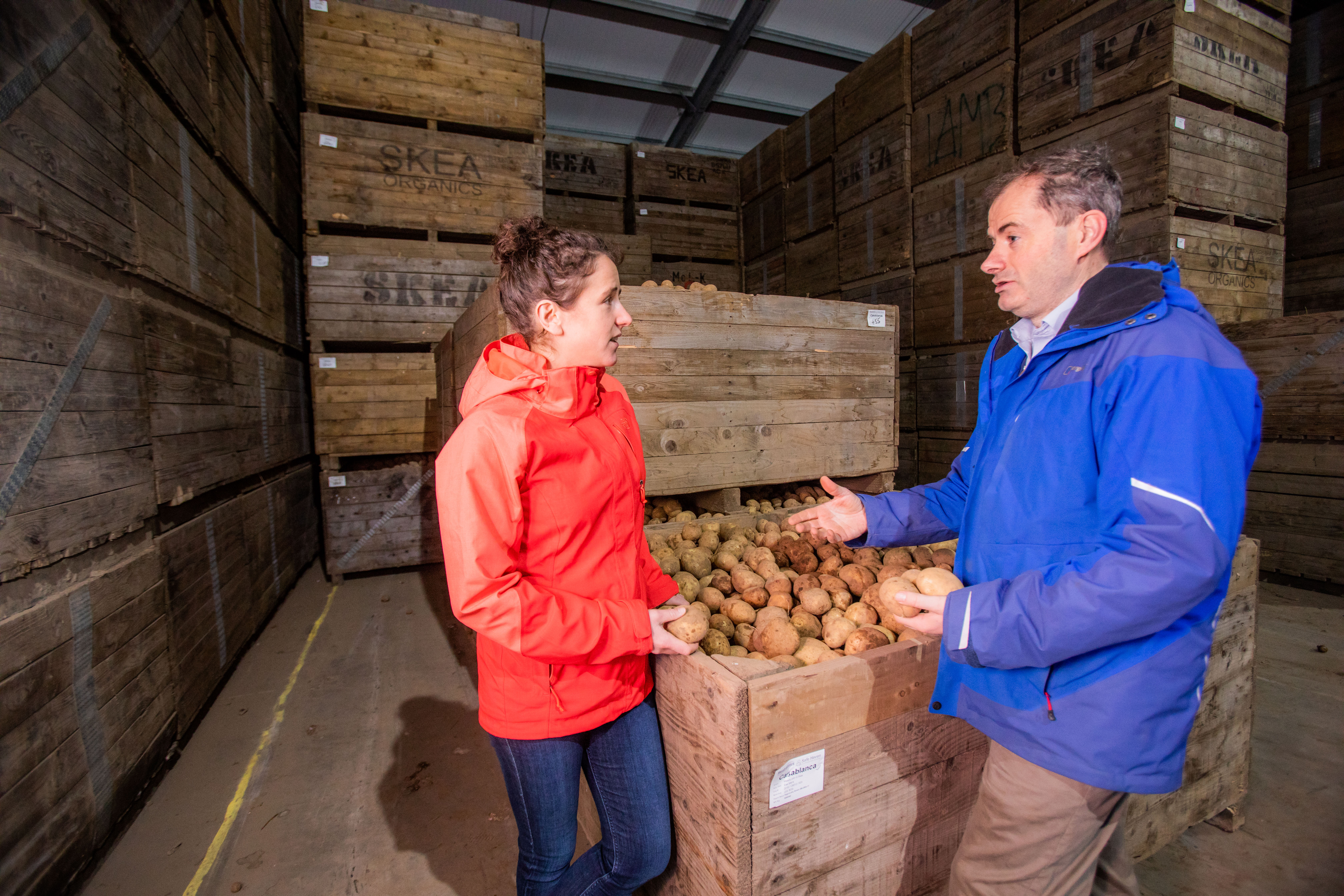Rural Affairs Minister Mairi Gougeon with seed potato producer Andrew Skea at his East Mains Farm, near Dundee. Picture: Steve MacDougall.