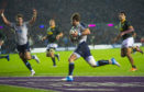 Scotland surrendered points to South Africa too quickly in the wake of Peter Horne's spectacular first half try.