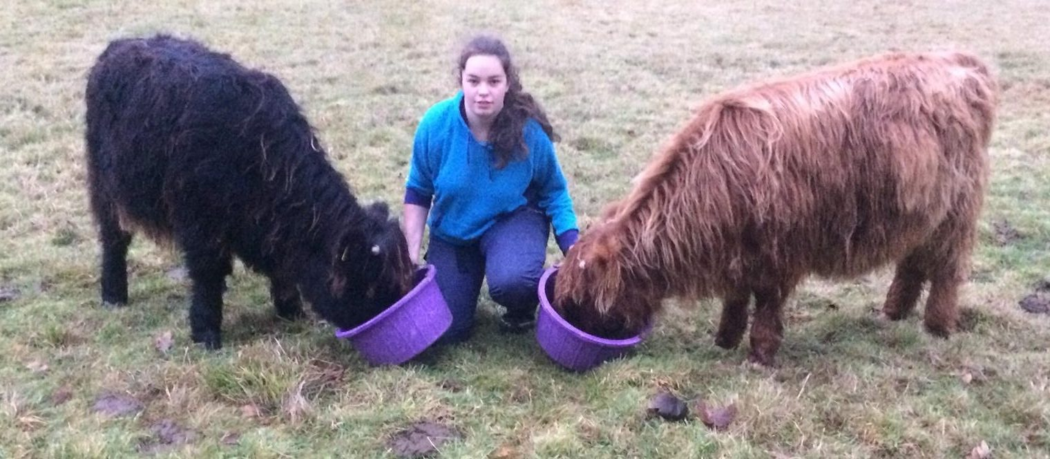 Fione Cruikshank alongside her calves Bru and Fern.