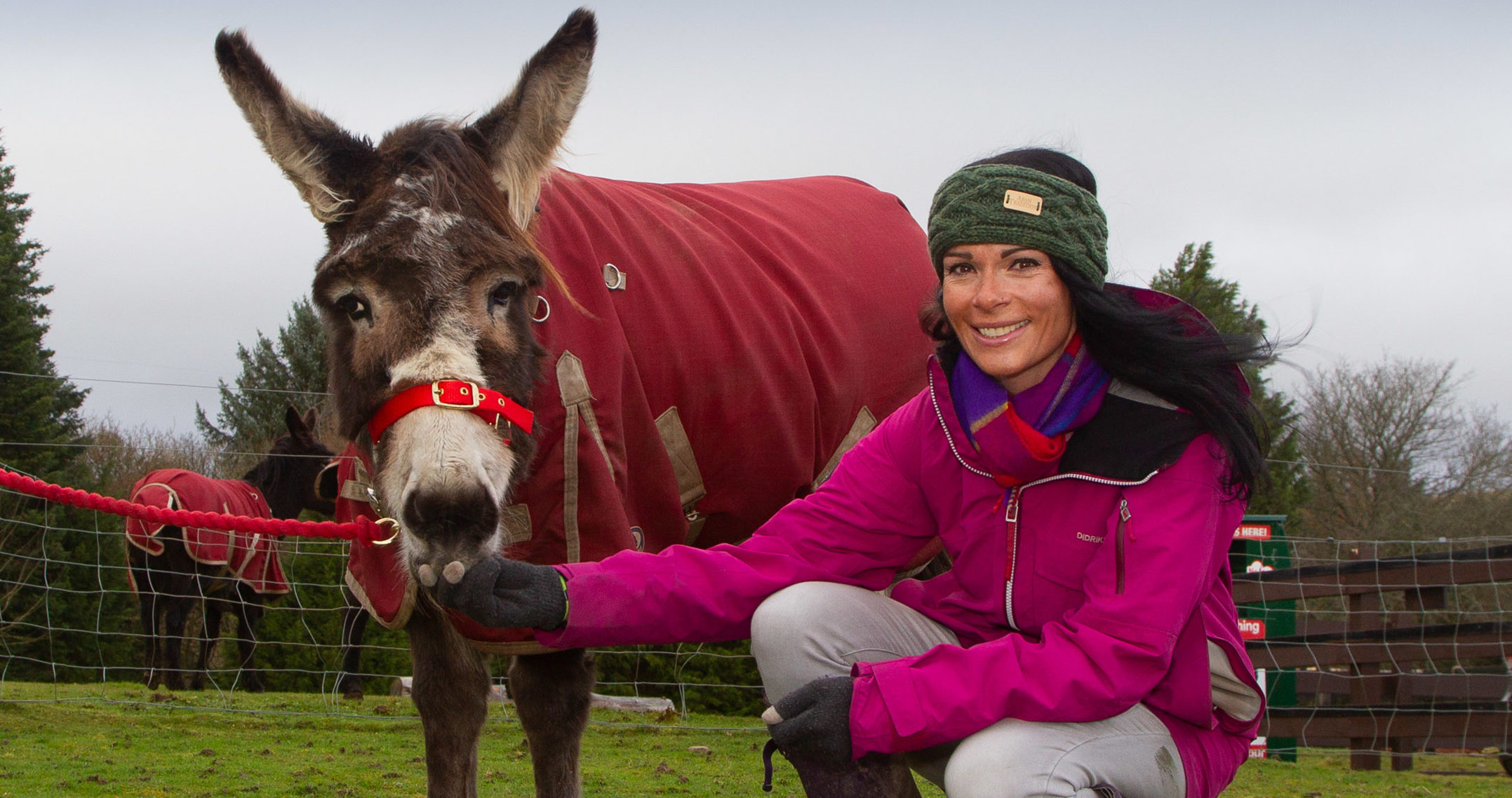 Gayle at Redwings Mountains with one of the rescued donkeys.