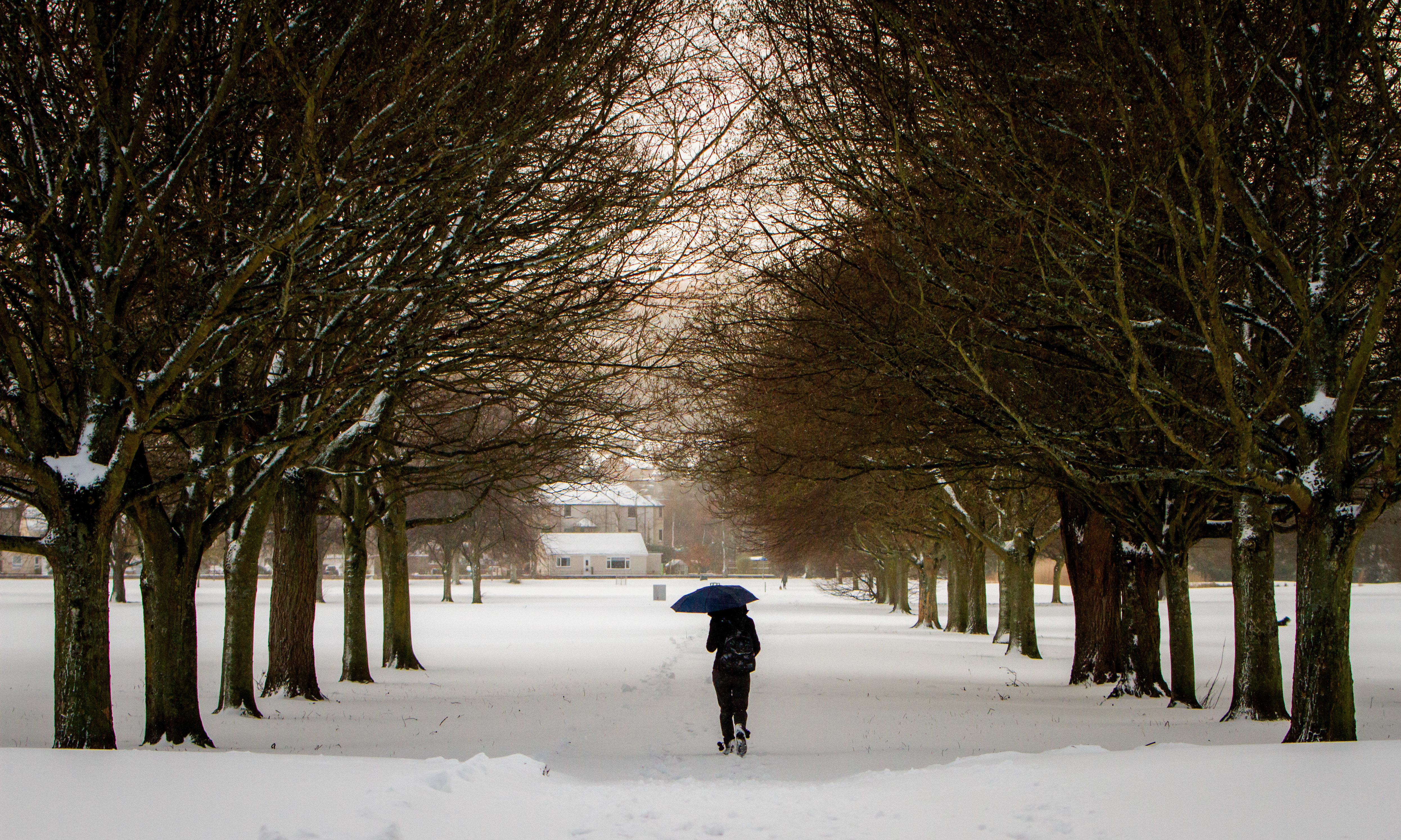 South Inch, Perth, during the Beast from the East,