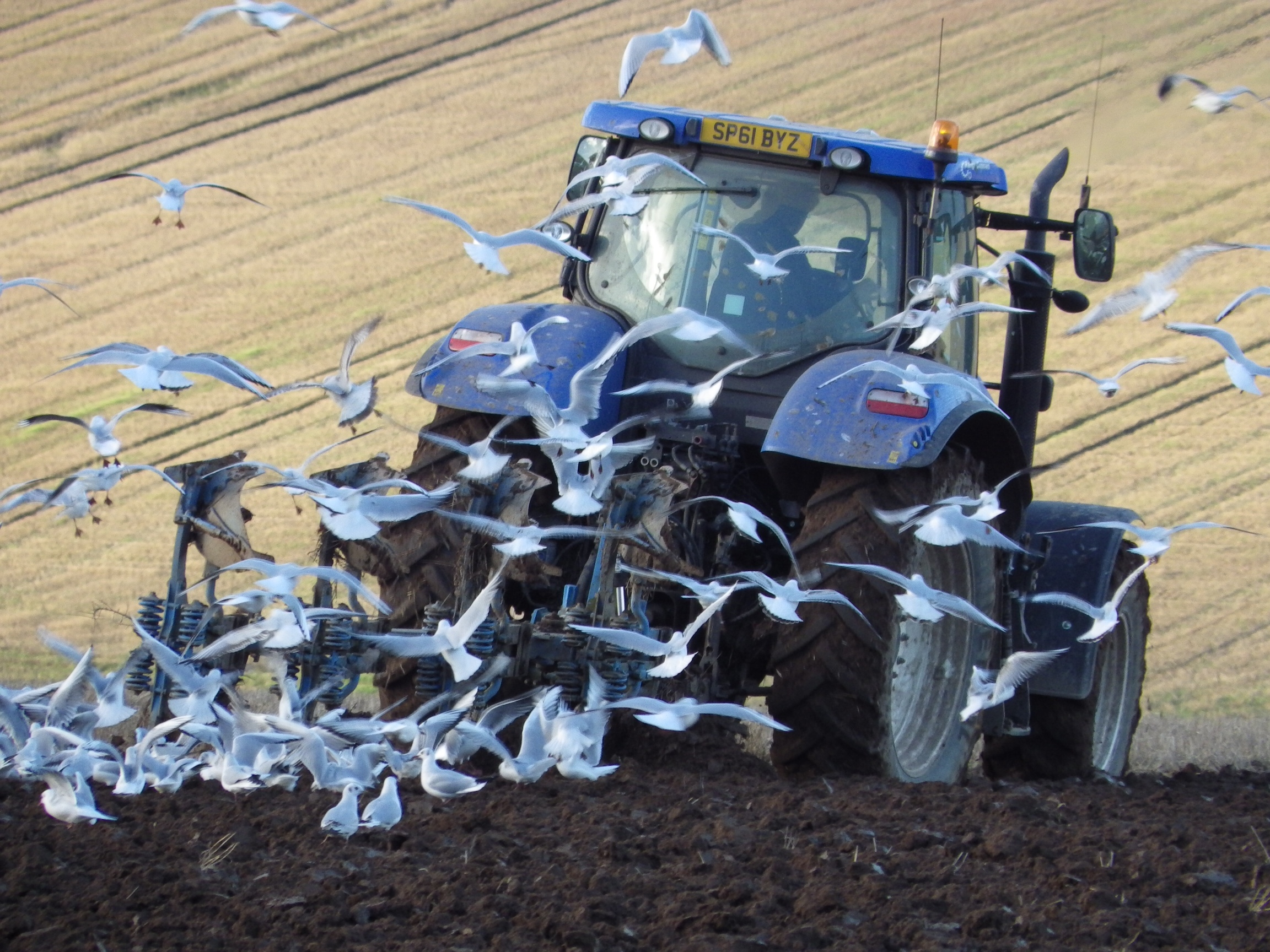 Scotland has a diverse agricultural landscape which poses challenges in developing policy.