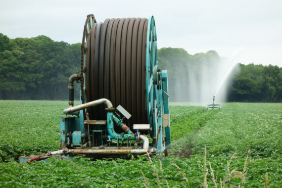 Irrigators were widely used on potato crops last summer.